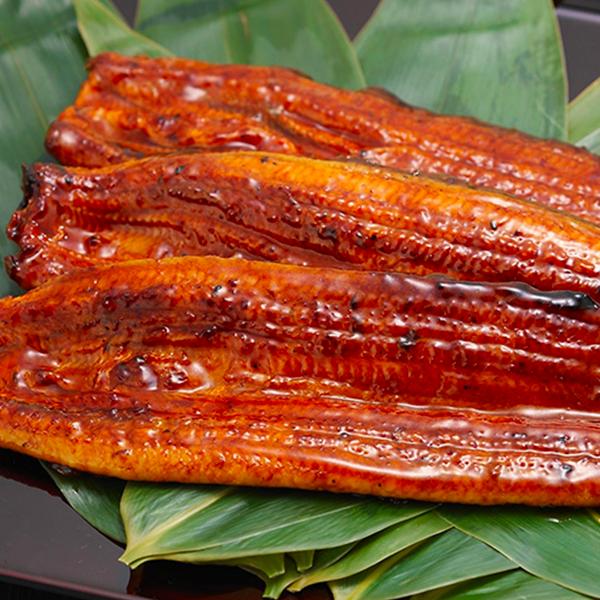 効果絶大!鰻(うなぎ)の美容と健康効果・ビタミン豊富な鰻の通販サイト