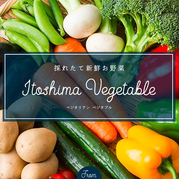 無農薬 無添加 野菜の通販|定期便で届く新鮮で美味しい野菜宅配